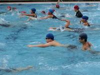 上学年水泳記録会